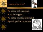 community level