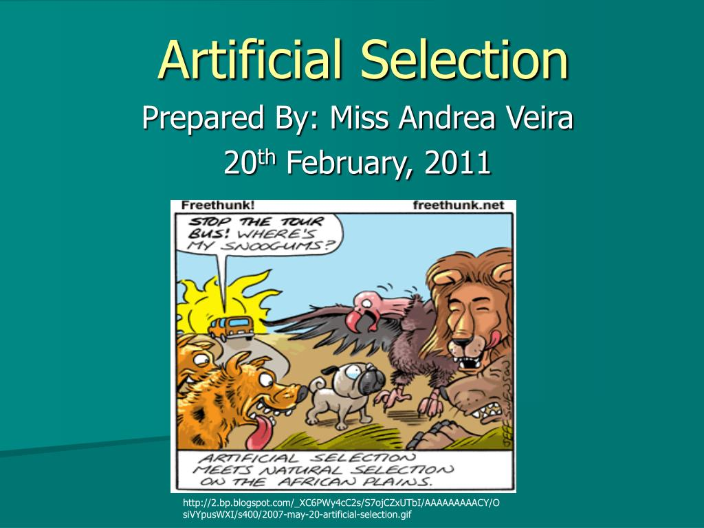 Ppt Artificial Selection Powerpoint Presentation Id297072