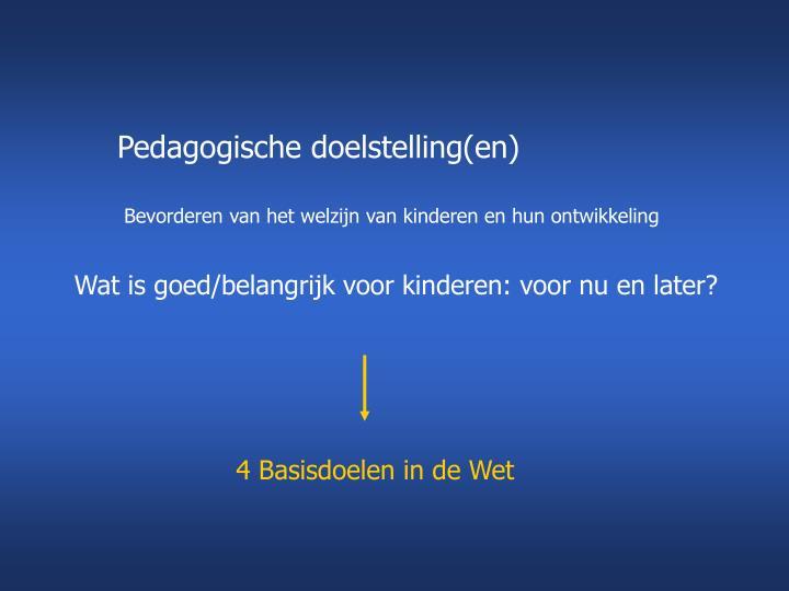 Pedagogische doelstelling(en)