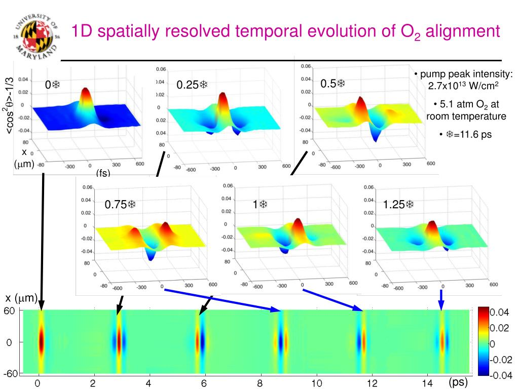 1D spatially resolved temporal evolution of O