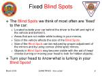 fixed blind spots