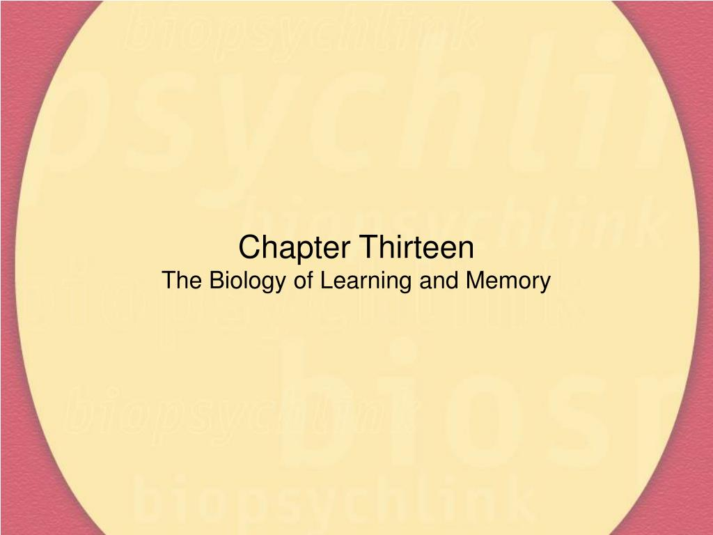 chapter thirteen the biology of learning and memory l.