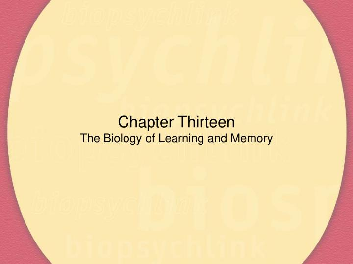 chapter thirteen the biology of learning and memory n.