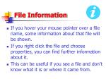 file information