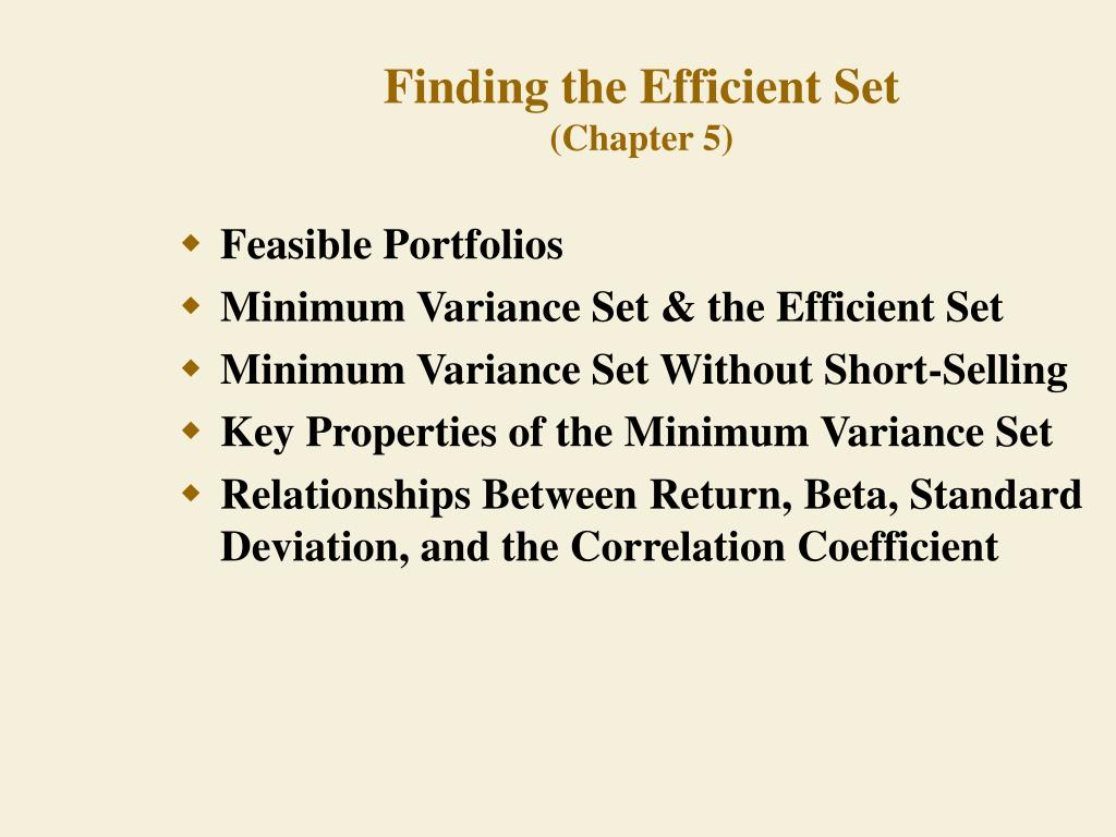 finding the efficient set chapter 5 l.