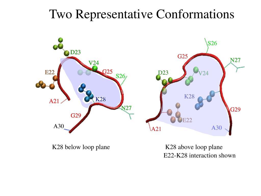 Two Representative Conformations