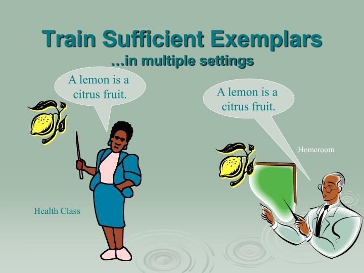 Train Sufficient Exemplars