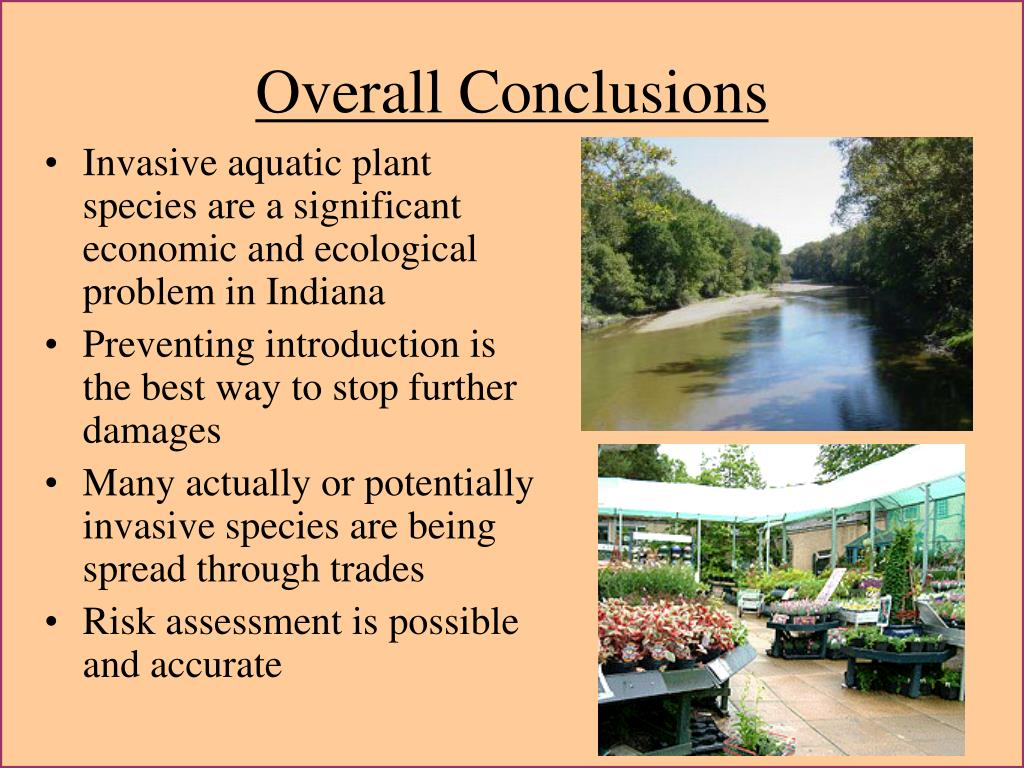 Overall Conclusions