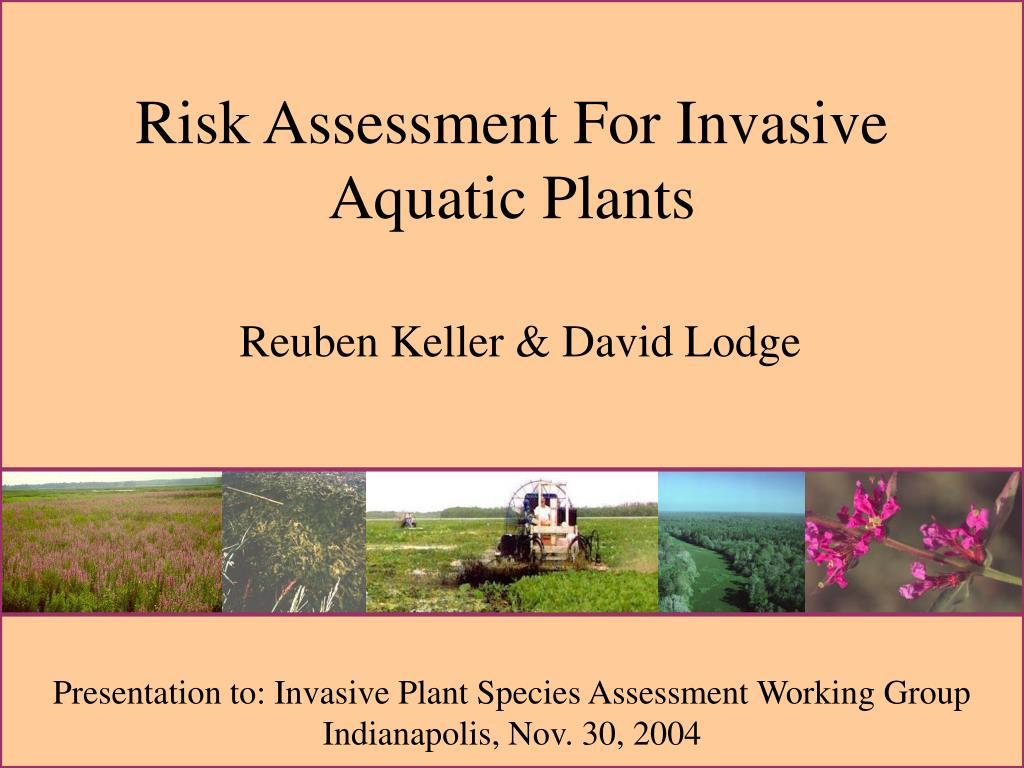 Risk Assessment For Invasive Aquatic Plants