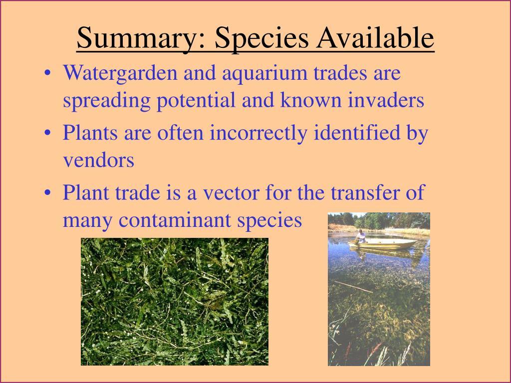 Summary: Species Available