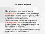 the nerve impulse52