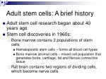 adult stem cells a brief history