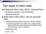 two types of stem cells