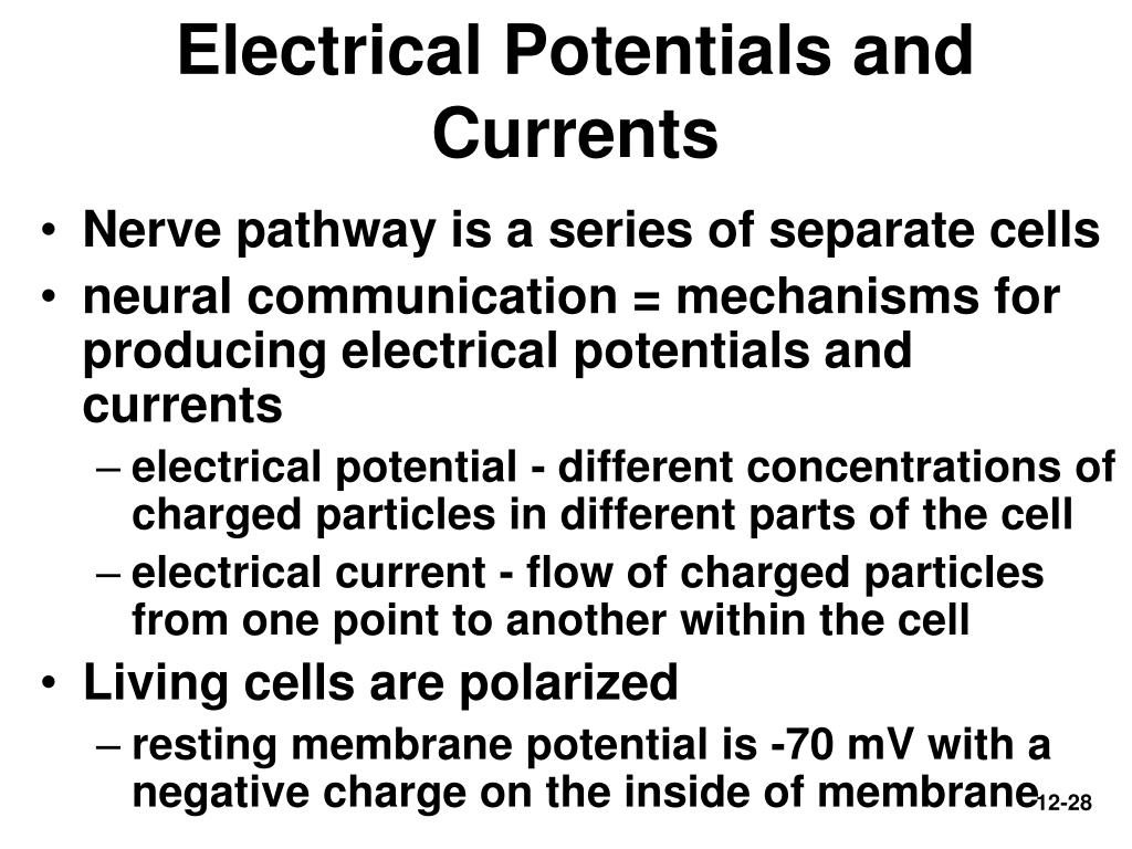 Electrical Potentials and Currents