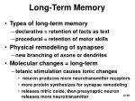 long term memory