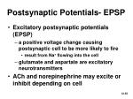 postsynaptic potentials epsp