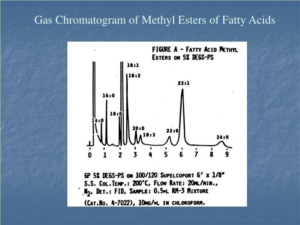 Gas Chromatogram of Methyl Esters of Fatty Acids