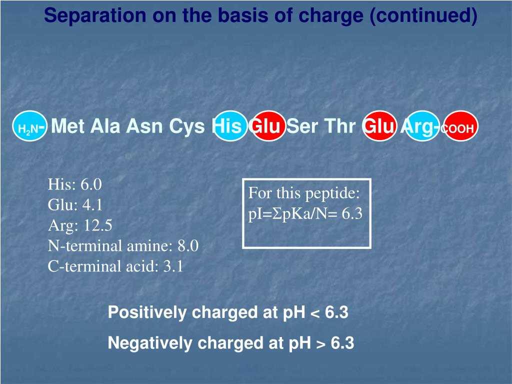 Separation on the basis of charge (continued)