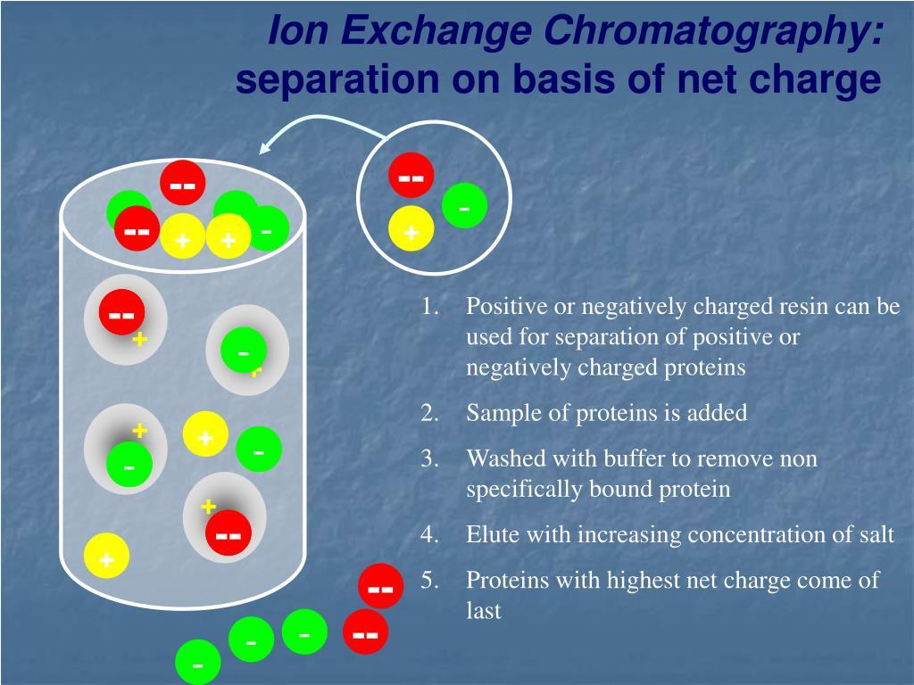 Ion Exchange Chromatography: