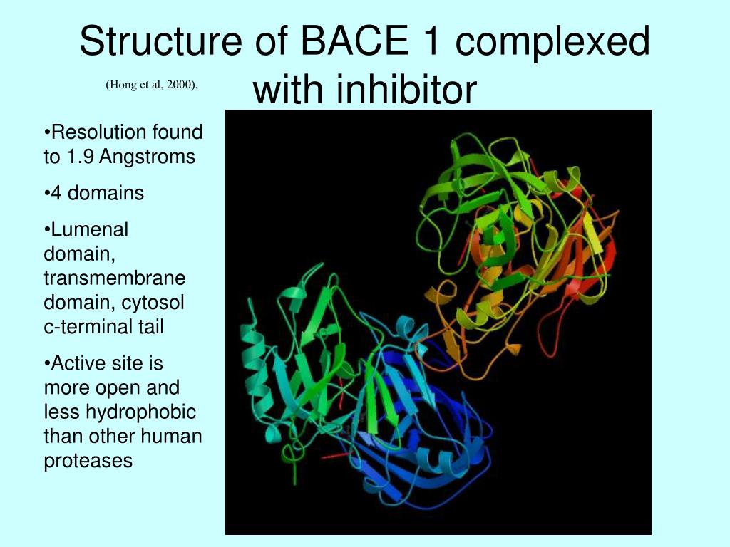 Structure of BACE 1 complexed with inhibitor