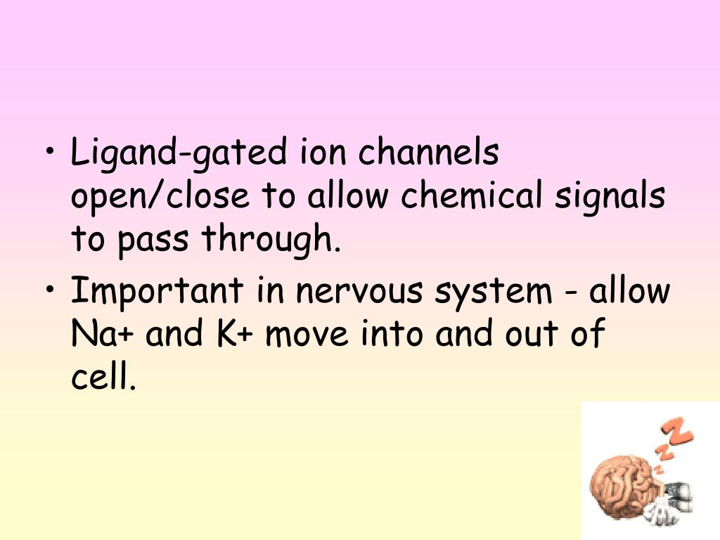 Ligand-gated ion channels open/close to allow chemical signals to pass through.