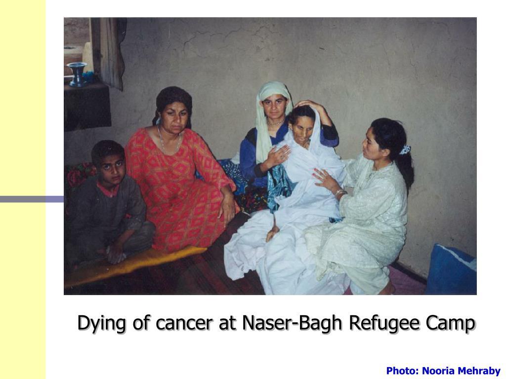 Dying of cancer at Naser-Bagh Refugee Camp