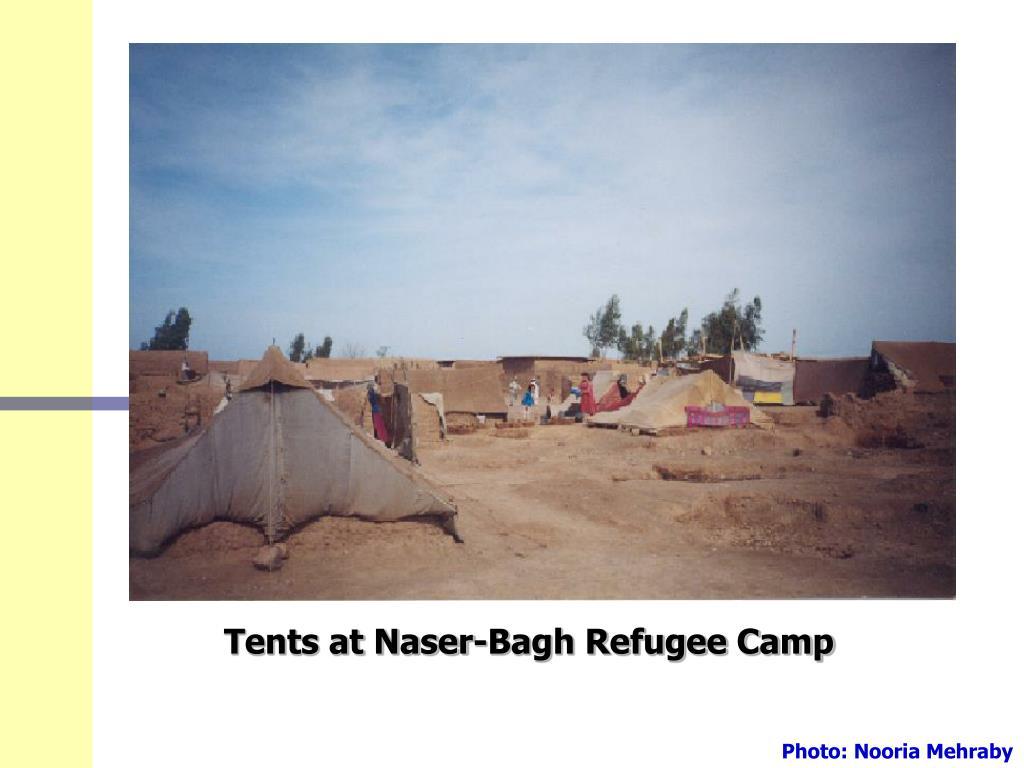 Tents at Naser-Bagh Refugee Camp