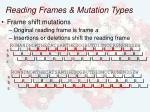 reading frames mutation types