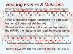 reading frames mutations