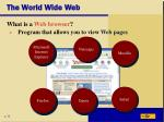 the world wide web14