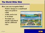 the world wide web20