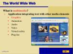the world wide web29