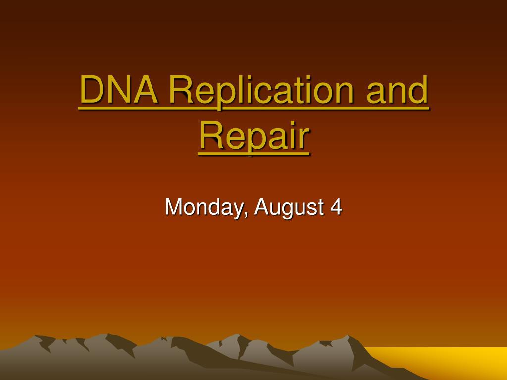 dna replication and repair l.