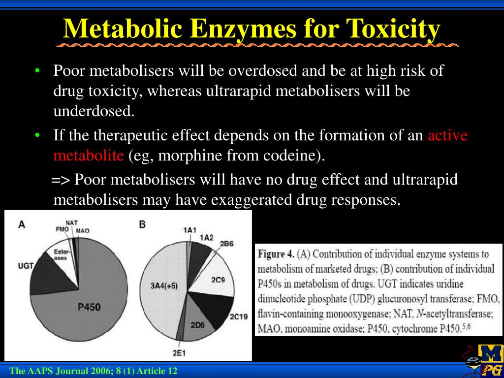 Metabolic Enzymes for Toxicity