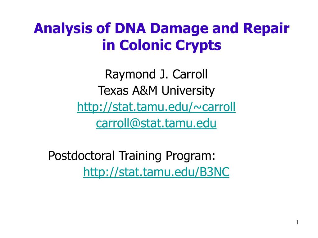 analysis of dna damage and repair in colonic crypts l.