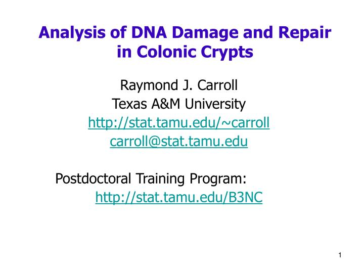 analysis of dna damage and repair in colonic crypts n.