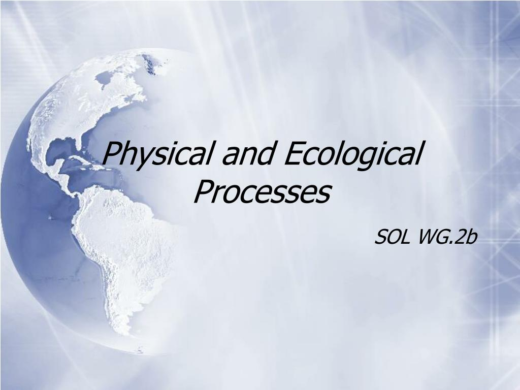 physical and ecological processes l.