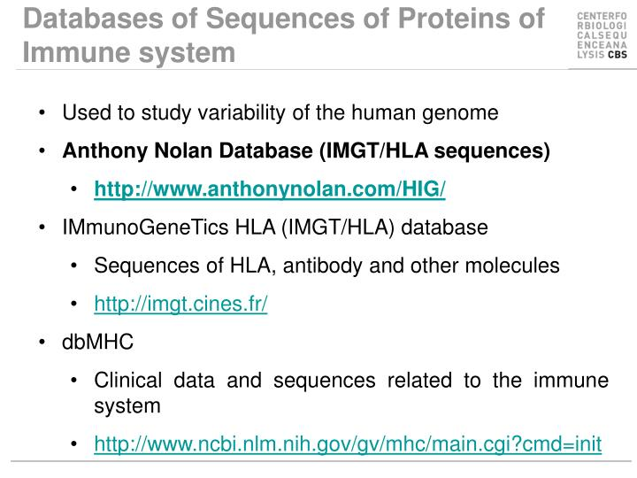 Databases of Sequences of Proteins of Immune system