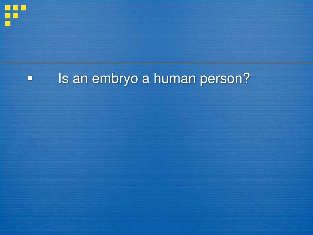 Is an embryo a human person?