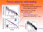 force velocity relationship