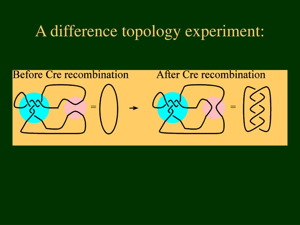 A difference topology experiment:
