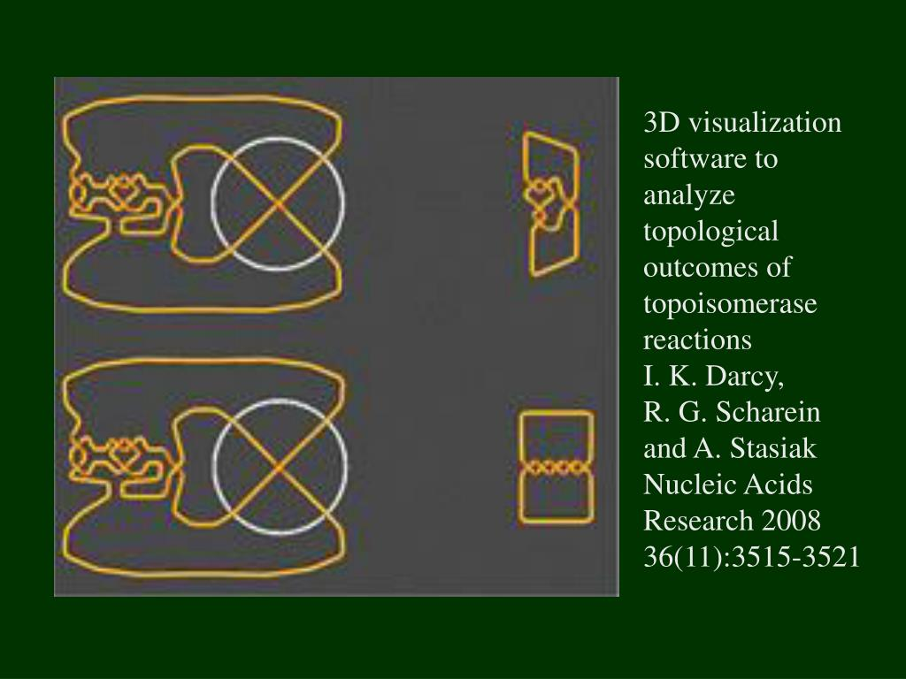 3D visualization software to analyze topological outcomes of topoisomerase reactions
