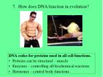 7 how does dna function in evolution