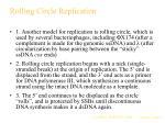 rolling circle replication