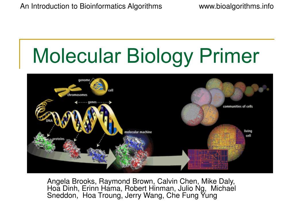 molecular biology primer l.