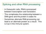 splicing and other rna processing