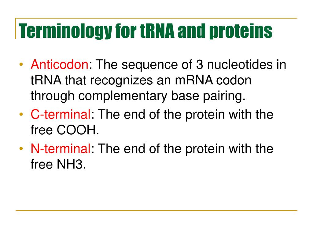 Terminology for tRNA and proteins