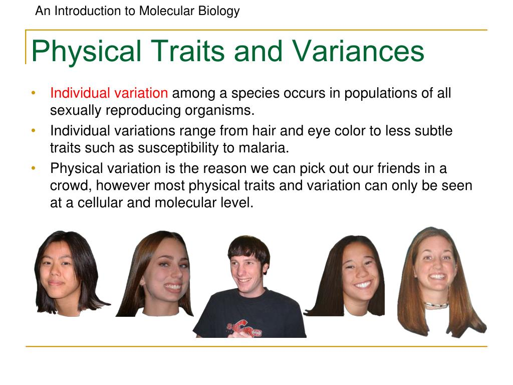 Physical Traits and Variances