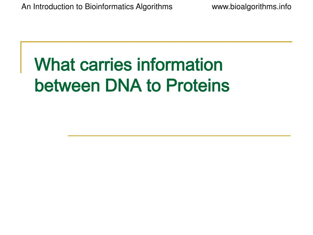What carries information between DNA to Proteins