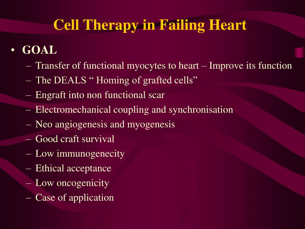 Cell Therapy in Failing Heart